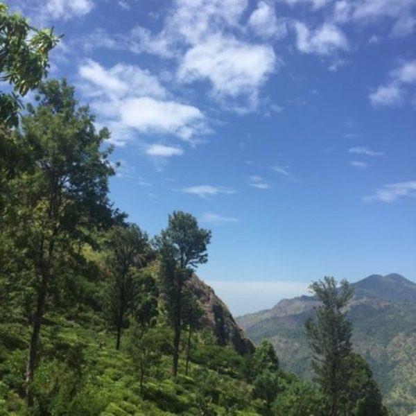 sri lanka op reis, inspiratie excursies en reistips