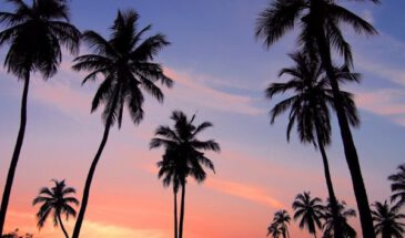 top 5 mooie stranden sri lanka