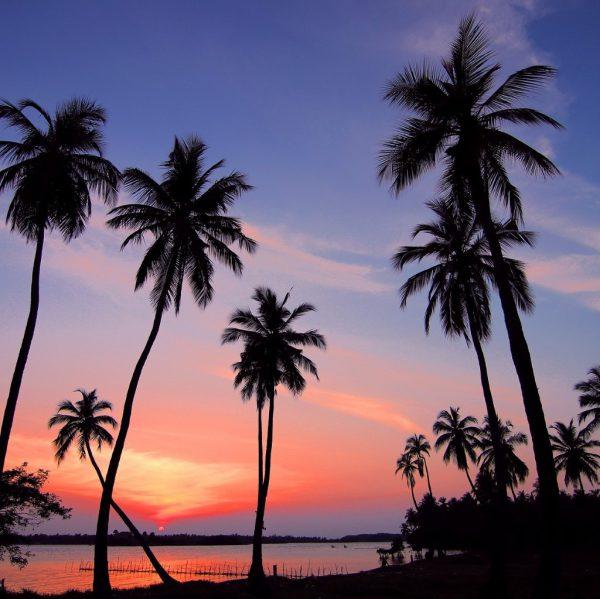 top 5 mooie stranden sri lankasri lanka