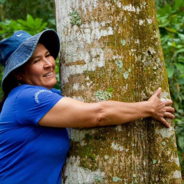 trees for all boom sri lanka op reis