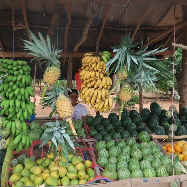 fruit sri lanka