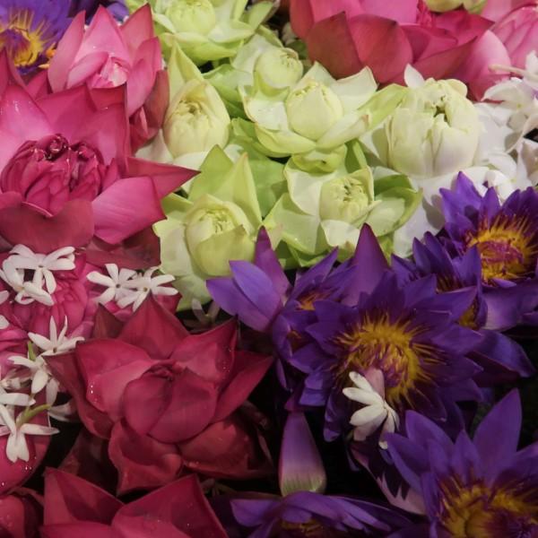 feestdagen sri lanka bloemen tempel van de tand kandy sri lanka